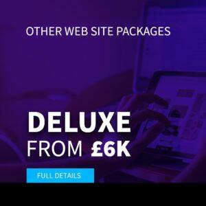 Deluxe website package