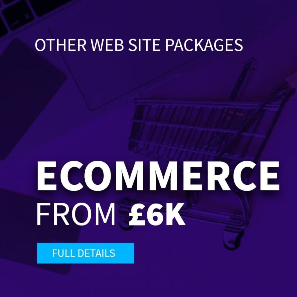 Ecommerce website package